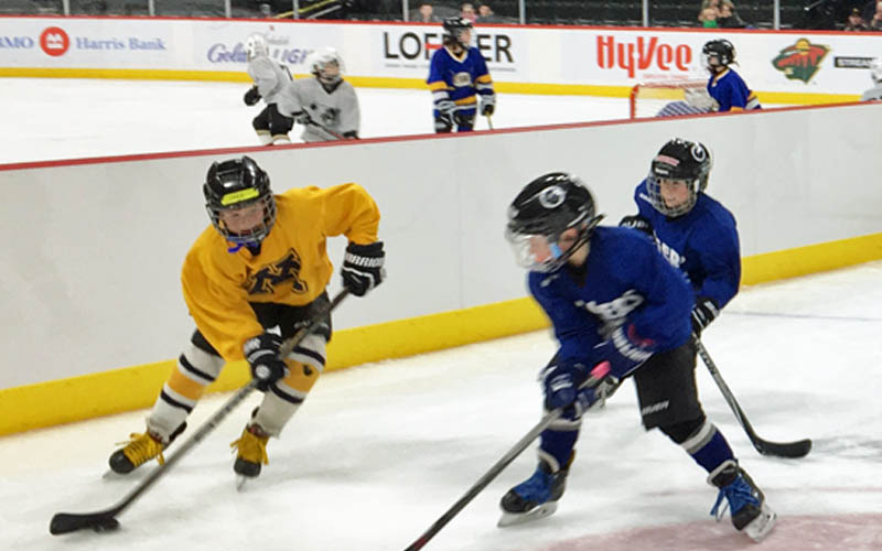 Hard Ice Dividers Enhance On-Ice Experience